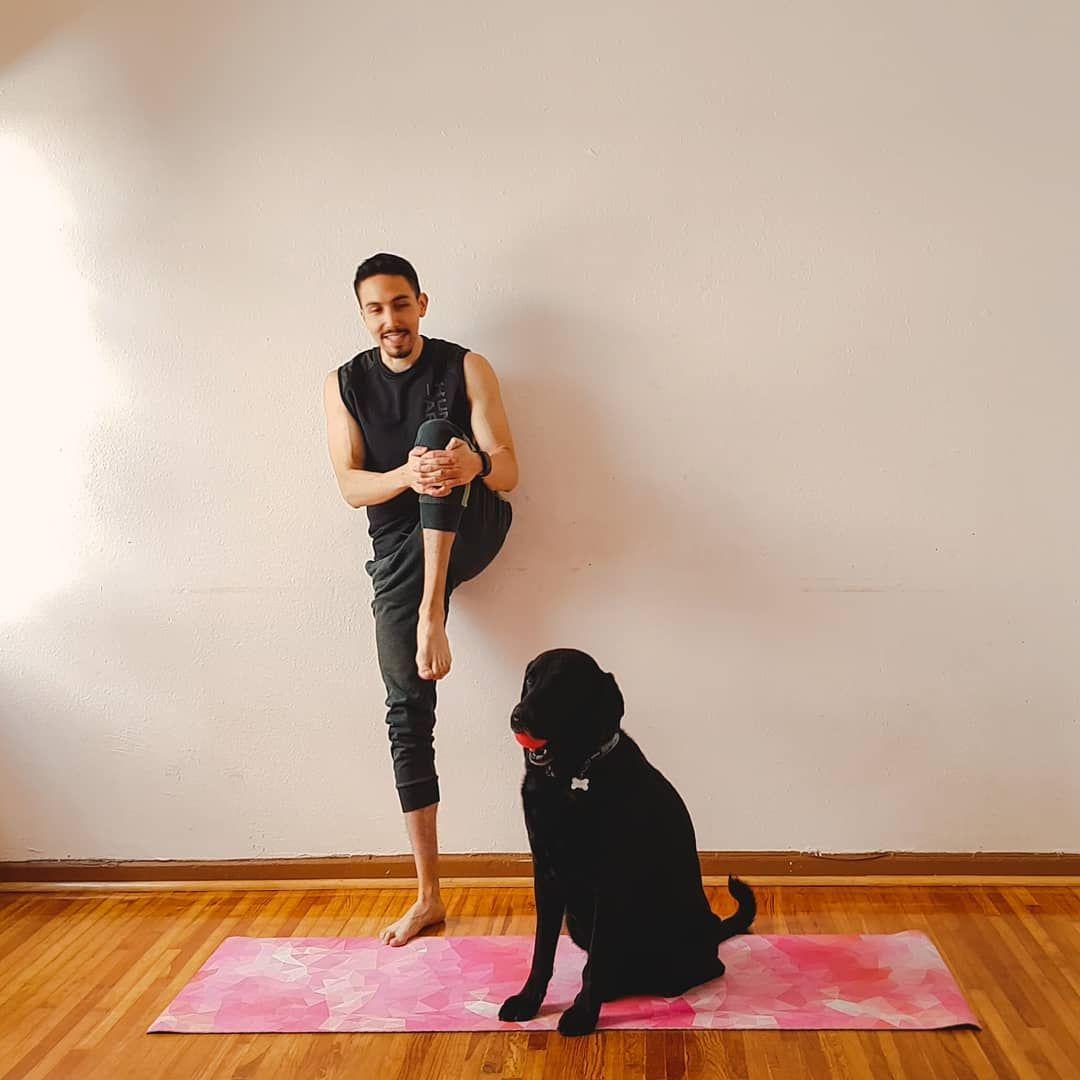 Antes de entrenar hay que estirar para de esa forma evitar algún tipo de lesión. Y que mejor hacerlo...