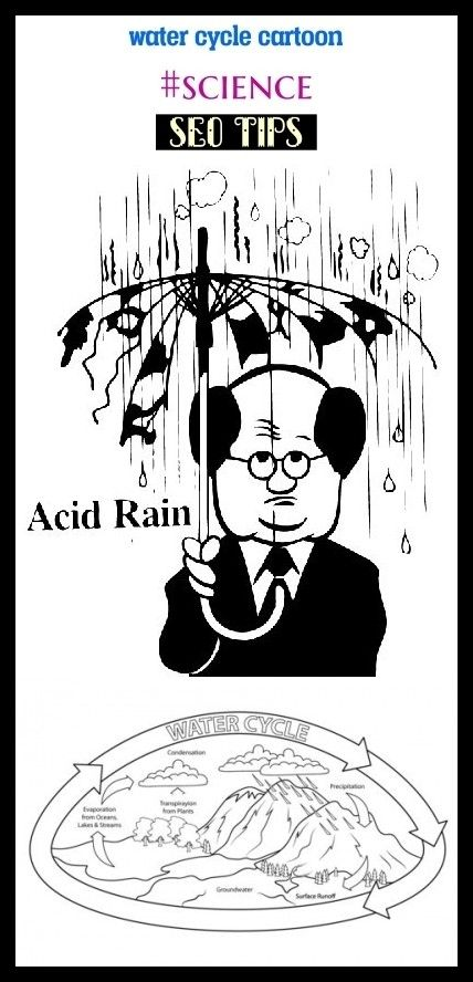 Water cycle cartoon #science #seo #education. water cycle