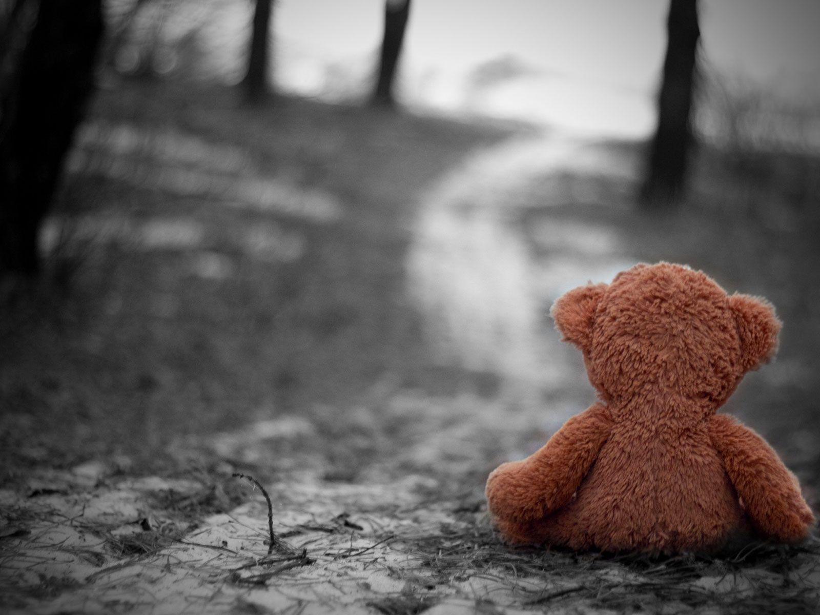 Teddy Bear Sitting Alone On Road