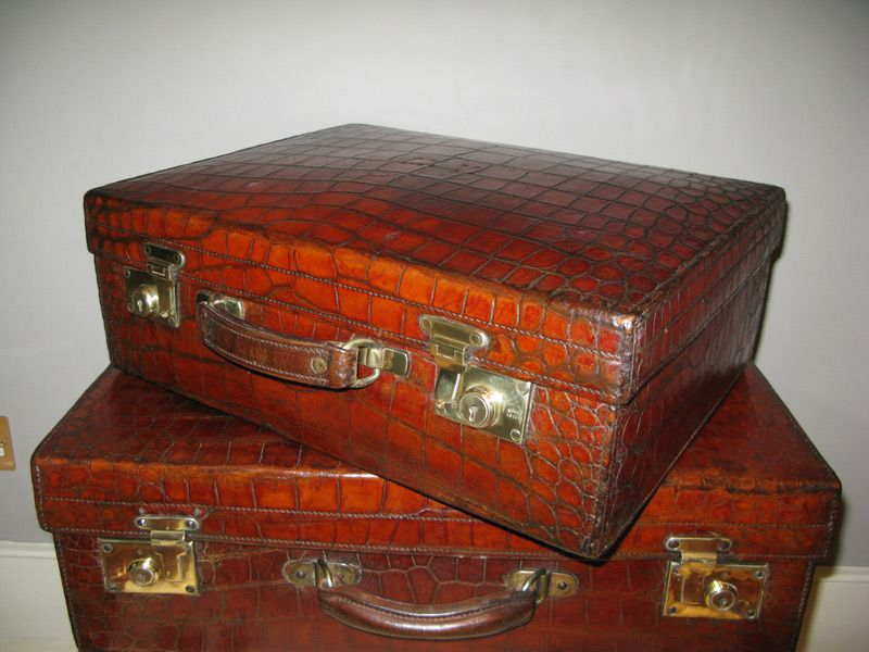 alligator luggage | 1920s English Crocodile Suitcase | alligator ...