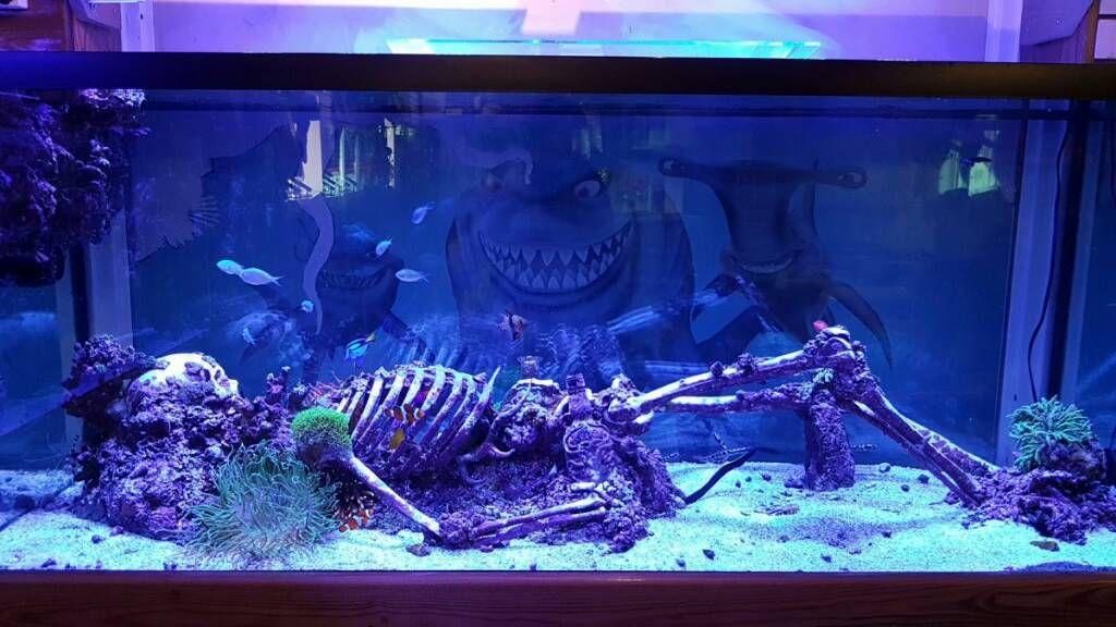 Image result for skull aquarium decoration