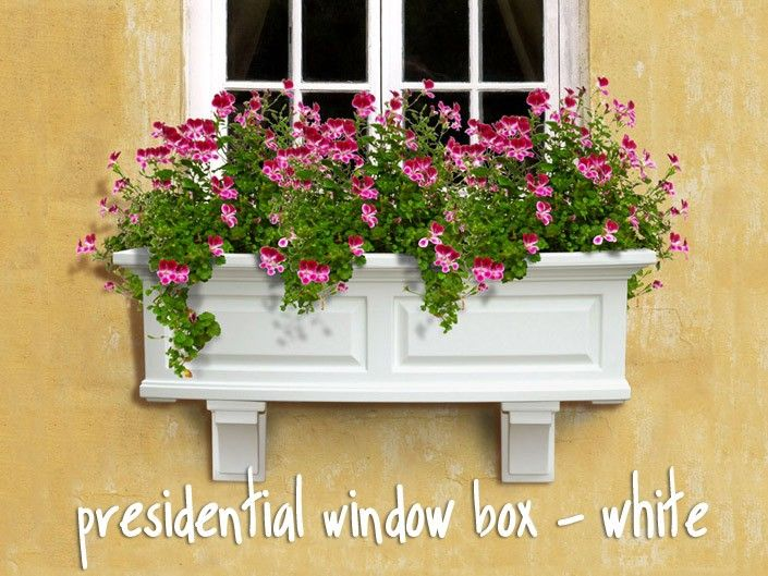 White Wood Shutters Exterior