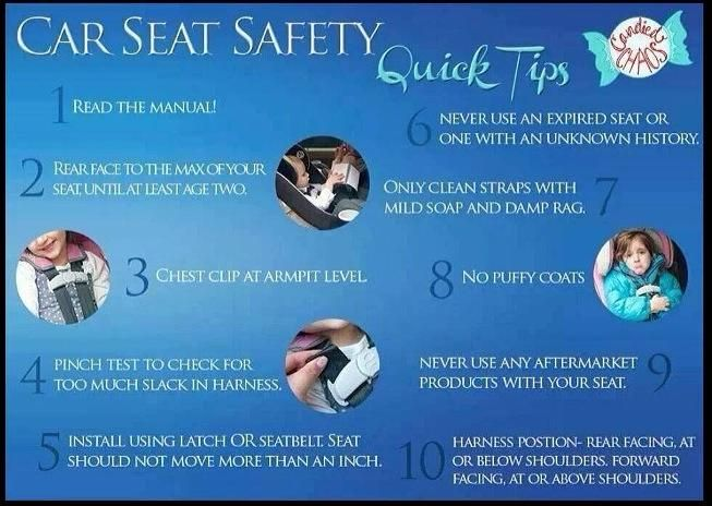 Cat Safety Basic Facts I M A Car Seat Stiffler Can T Stand Ppl Posting Pics With Their Kids Stred In And The Straps Are Super Loose Chest