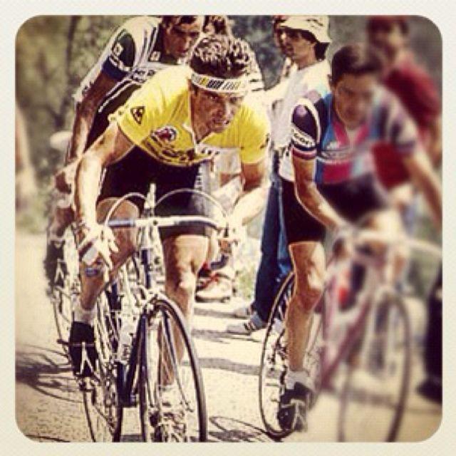 Bernard hinault stroppy belgian cycling pinterest for Garage bernard carpentras