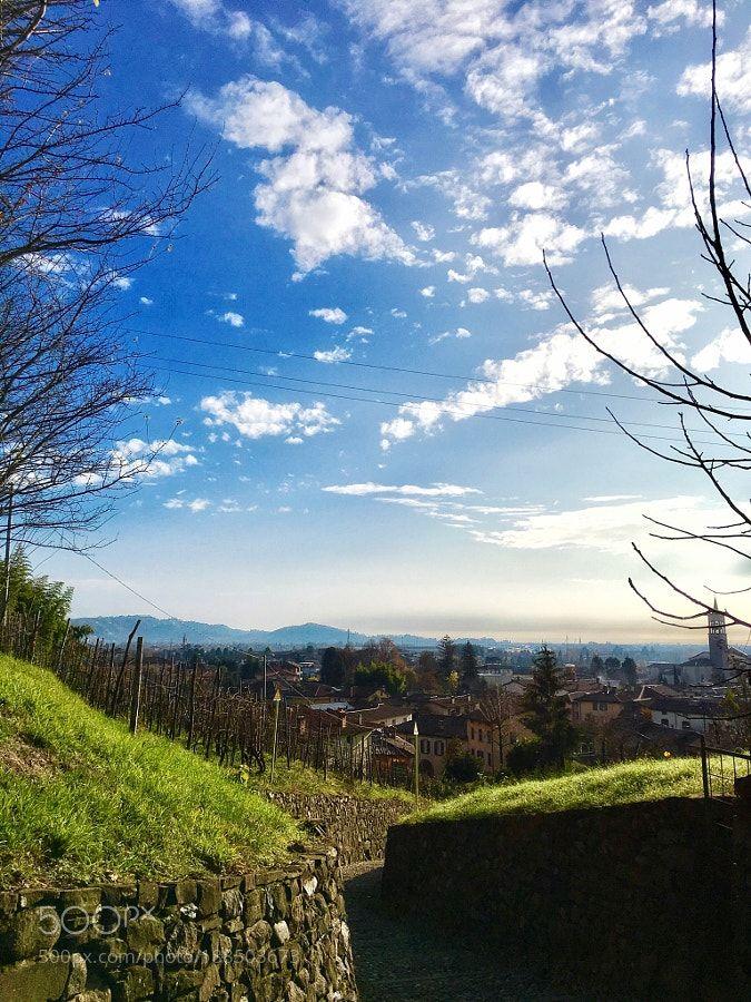 http://500px.com/photo/188503673 Beautiful view near Bergamo by AureliaRampin -. Tags: skylandscapenaturesunlighttreegrassmountainoutdoorsscenic