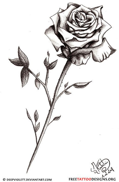 50 rose tattoos meaning all things roses pinterest for Rose with stem tattoo designs