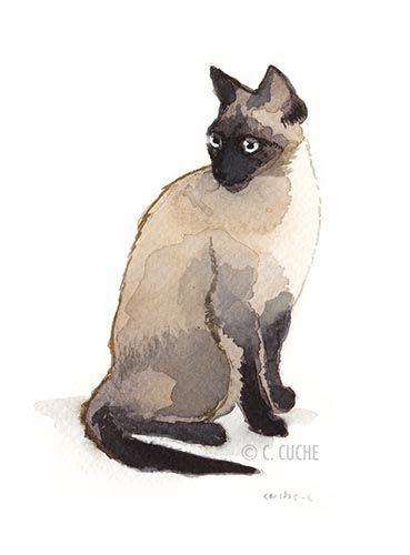 Chat siamois assis peinture aquarelle christelle cuche - Dessin chat assis ...
