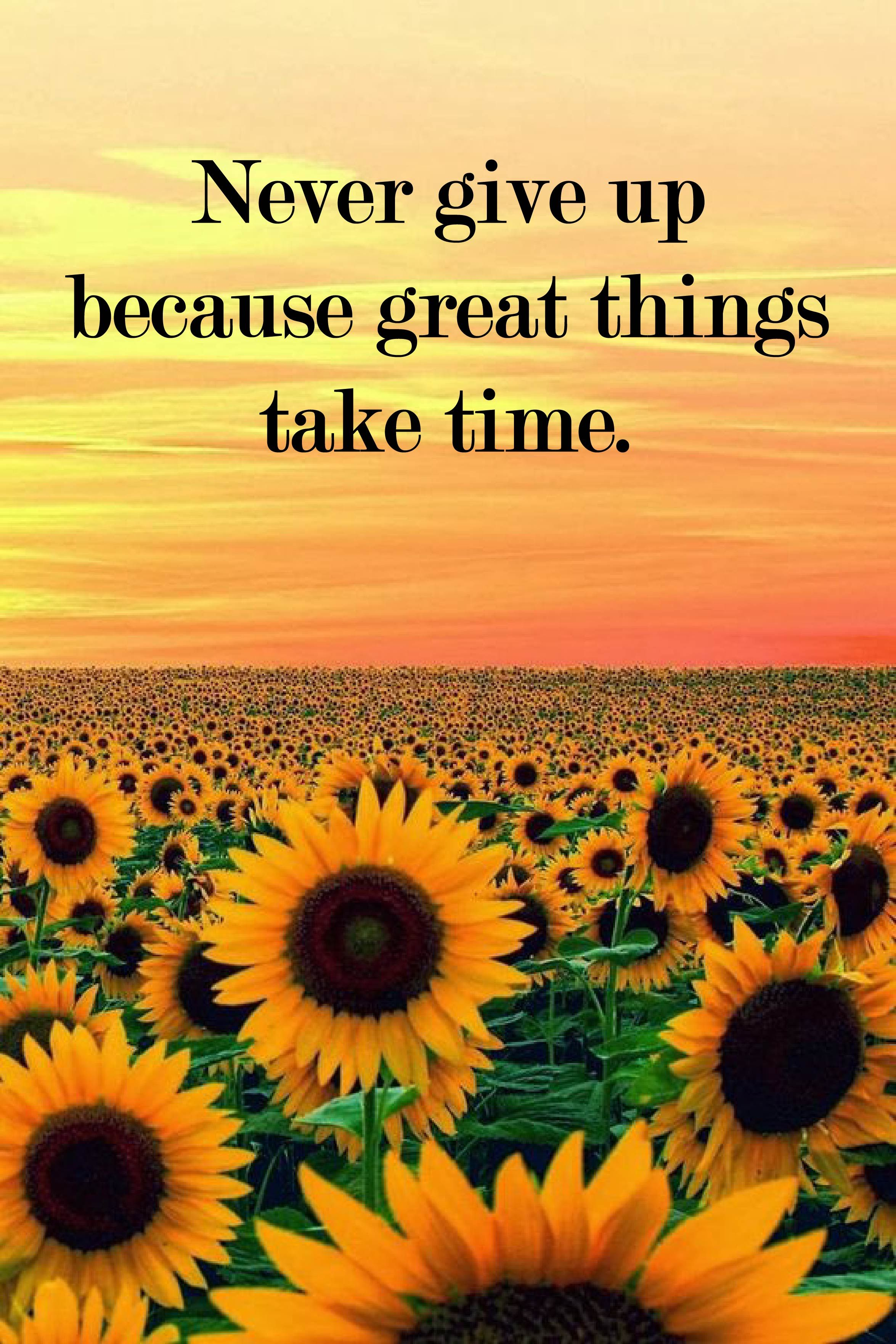 Pin by Seize Positivity on Positivity   Sunflower quotes ...