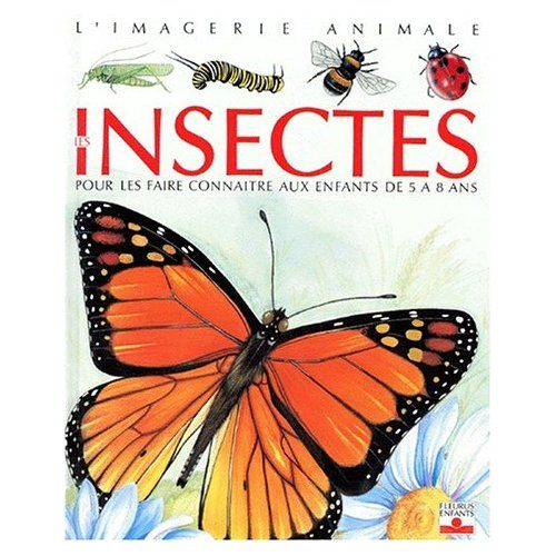 many insect ideas (french site)