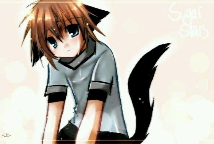 Neko Boy Anime Wolf Neko Wolf Ears And Tail