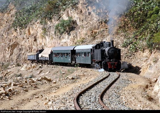 RailPictures.Net Photo: 442.59 Eritrean Railways 4-4-0 at Near Arbaroba, Eritrea by Fokko Niesen: