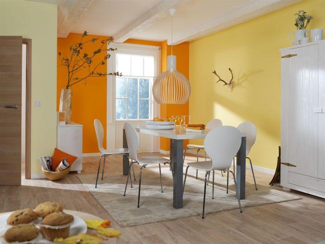 alles rund um farbe tipps von obi f r das perfekte wohnambiente orange esszimmer farben und. Black Bedroom Furniture Sets. Home Design Ideas