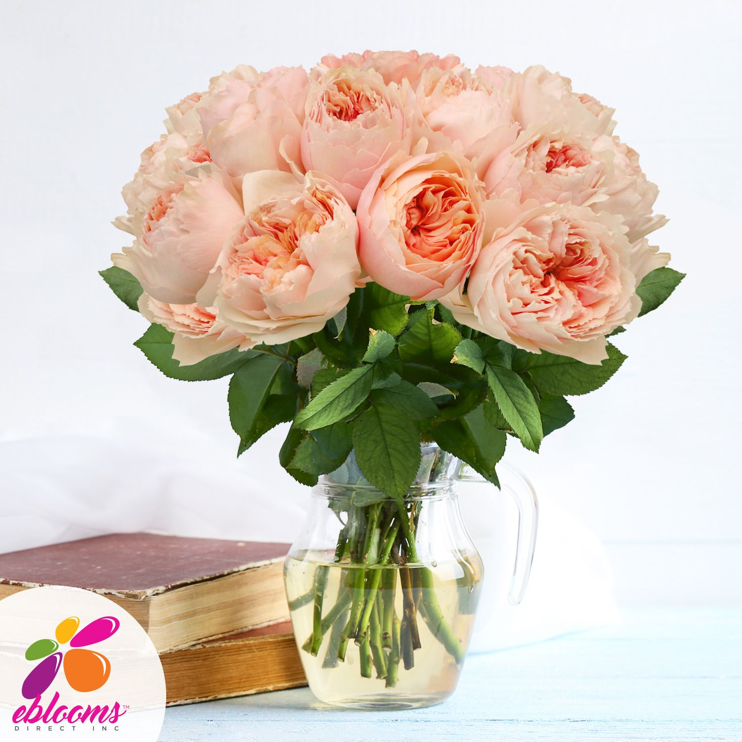 Wholesale Flowers For Weddings Events: Garden Rose Hot Pink - EbloomsDirect