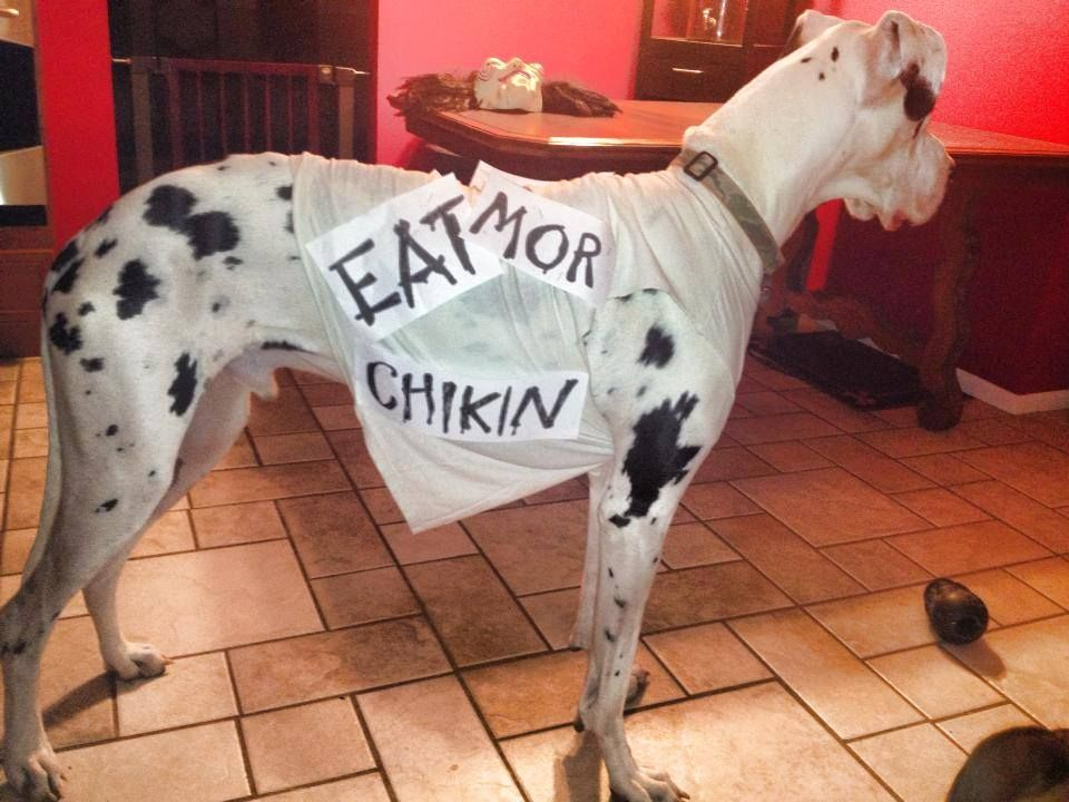 That S Awesome Great Dane Funny Great Dane Costume Great Dane