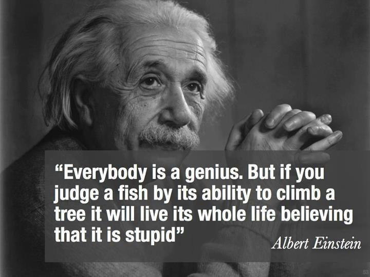Albert Einstein Quotes Children S Literature Pinterest