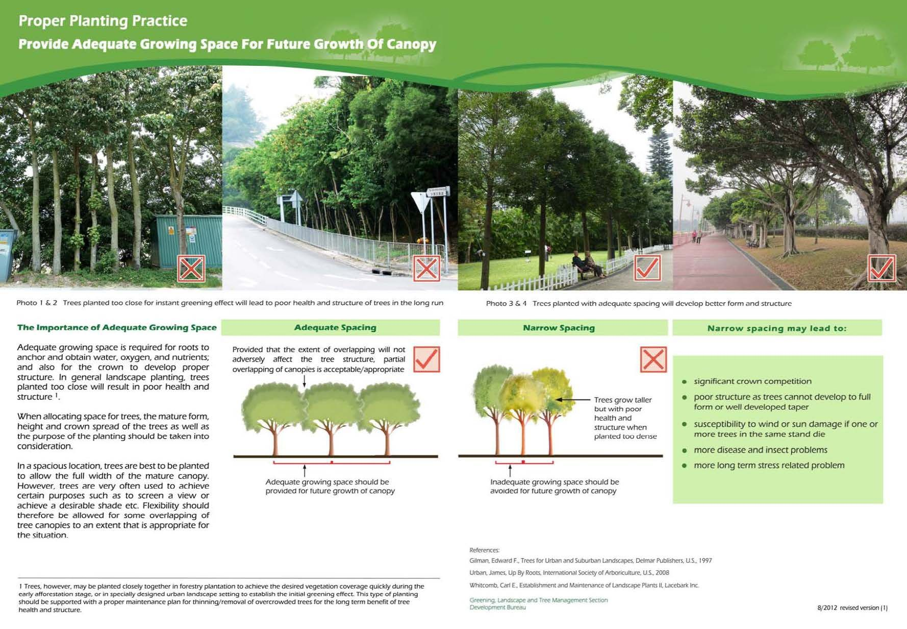Sufficient Space And Quality Soil Is The Key To Support Healthy Tree Growth 1 Allow Sufficient Space Both Above And Below Ground F Tree Growth Tree Care Tree