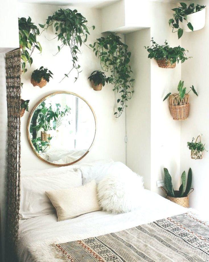 beautiful indoor plants design in your interior home also rh pinterest