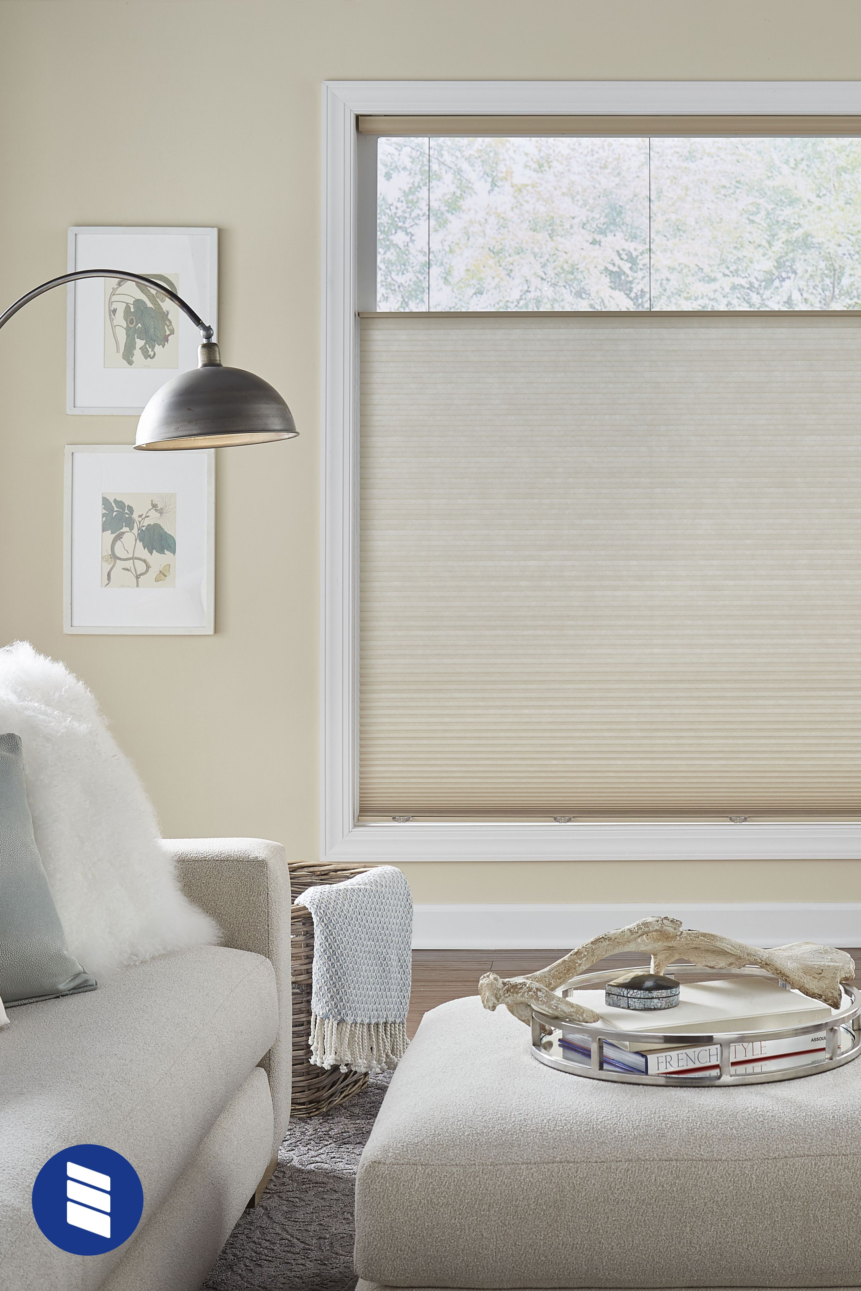 Premium Light Filtering Cellular Shades Cellular Shades Insulated Blinds Window Treatments Living Room