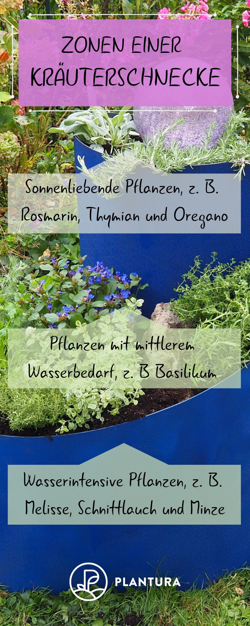 Kräuterschnecke in 10 Minuten anlegen: Video & Tipps – Plantura  – Kräutergarten: Kräuter anpflanzen