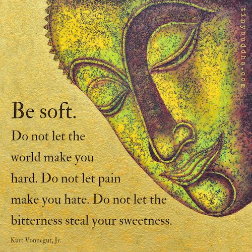 Be Soft; Do Not Let the World Make You Hard - Tiny Buddha
