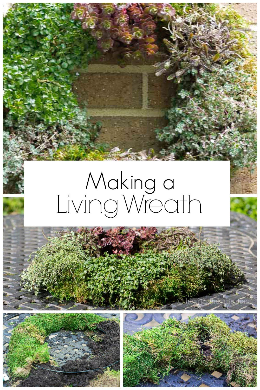 ea03bb3d36a30547b28c6ebef02f9cca - How To Make A Living Gardening