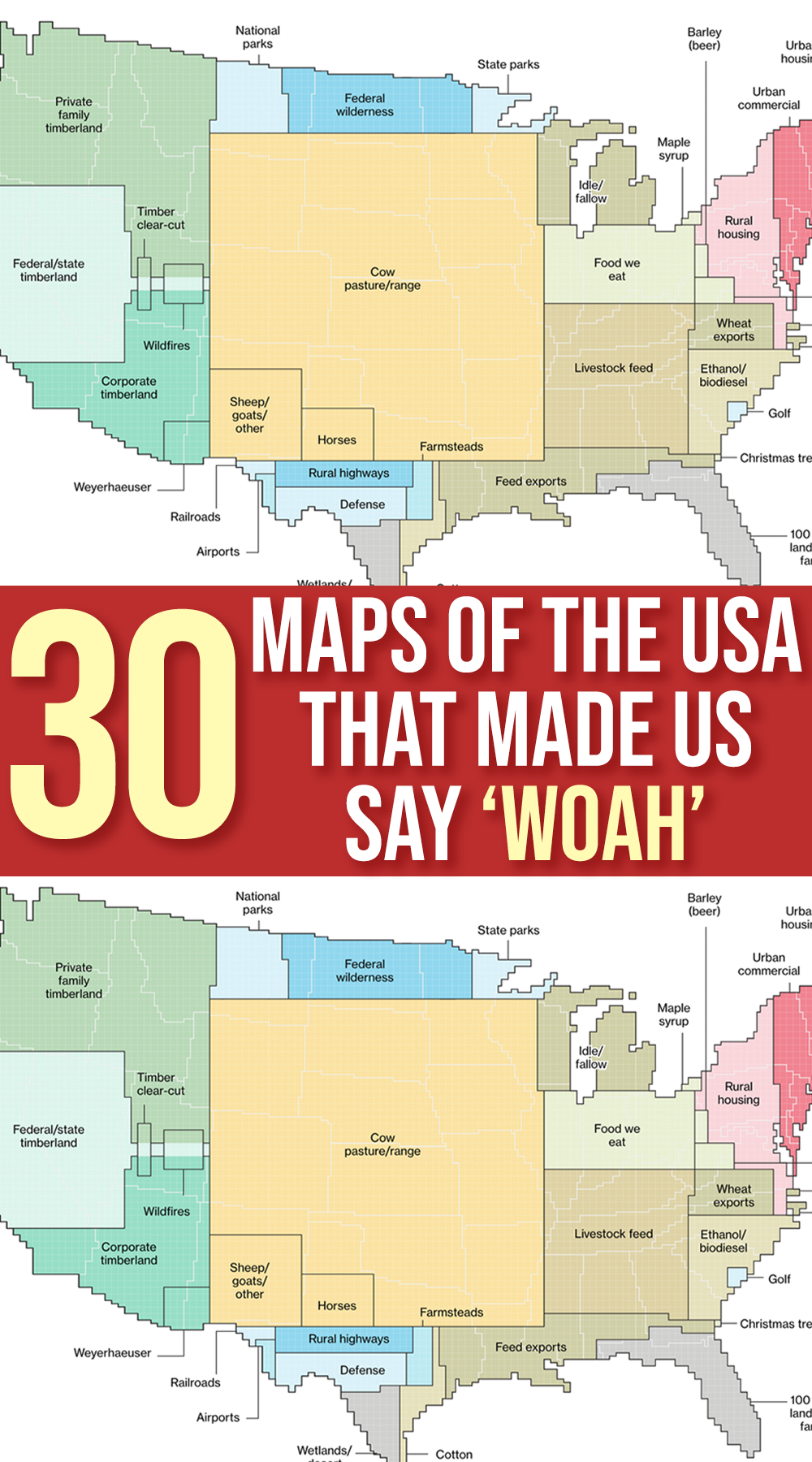30 Maps Of The Usa That Made Us Say Woah In 2020 Map Airport Map Best Trees For Privacy