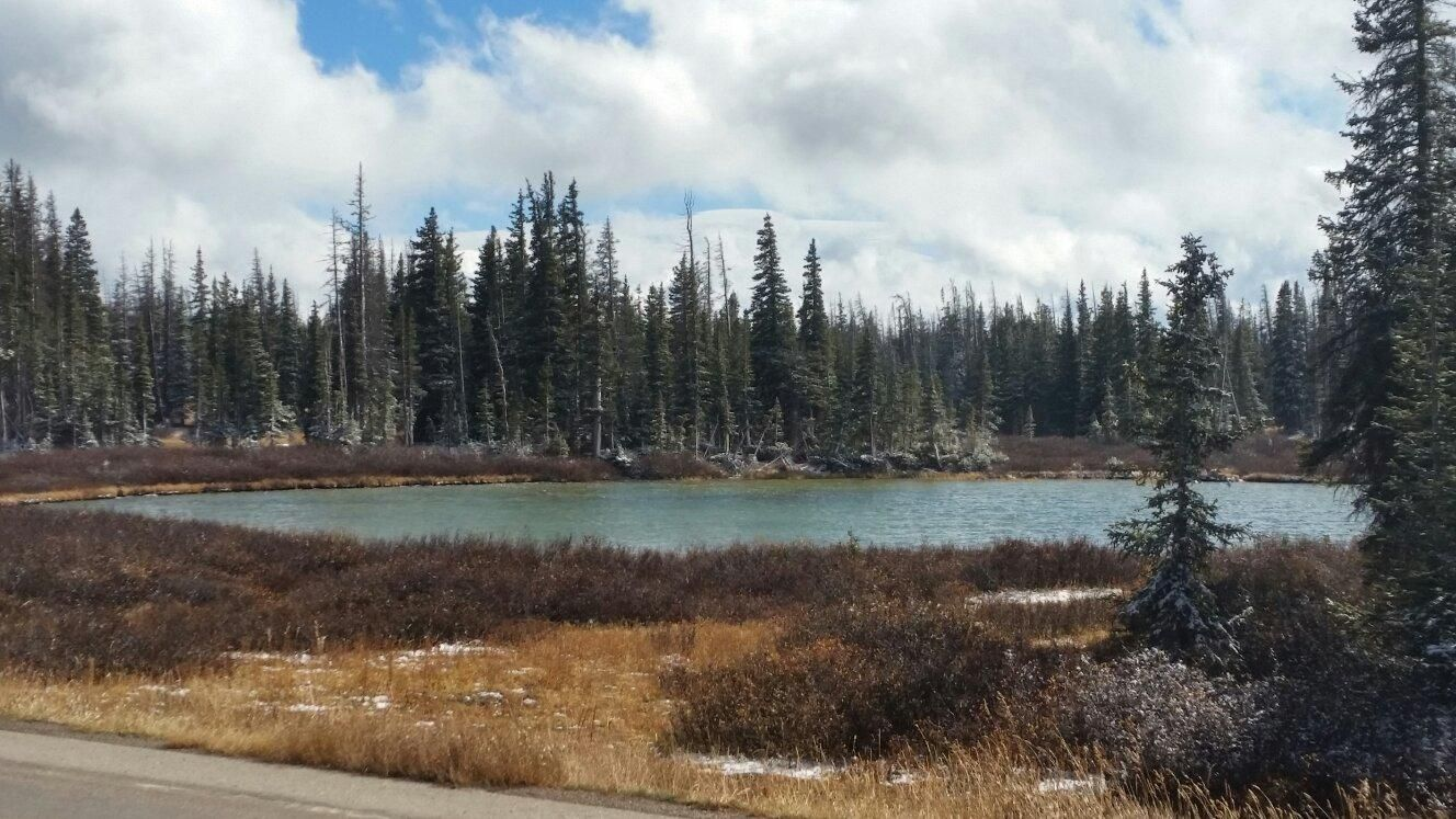 Medicine Bow National Forest (Laramie, WY): Address, Phone Number, Top-Rated Attraction Reviews - TripAdvisor