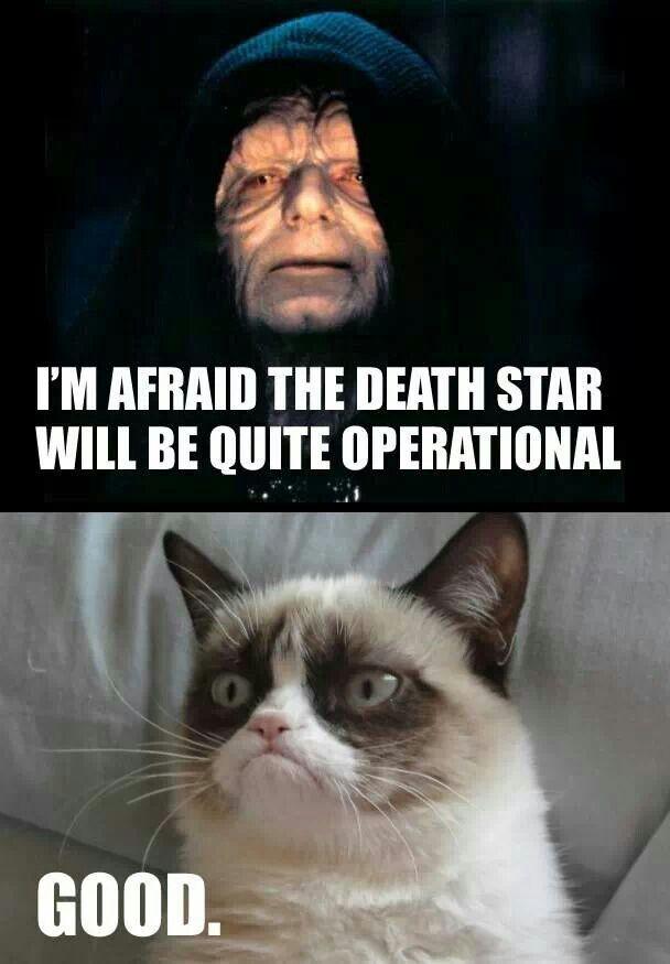 Pin By Nick Atlas On Jedi Sith Lords Grumpy Cat Humor Grumpy Cat Meme Grumpy Cat