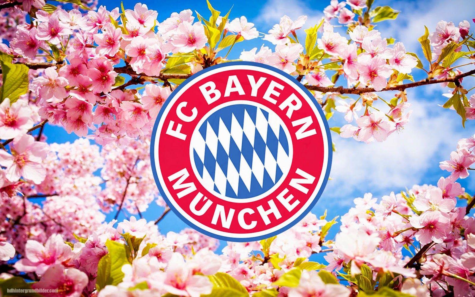 Fc Bayern Cottbus