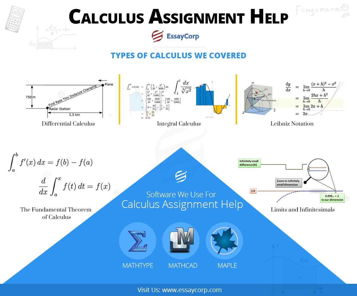 calculus assignment