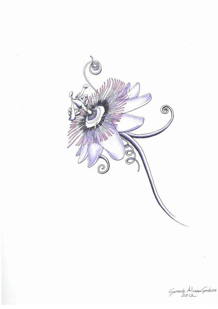 Passiflora Tattoo Design Tatouage Dos Tatouage Tatoo