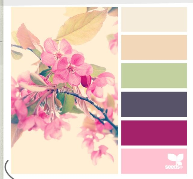 More color | Typical wedding board | Pinterest | Color pallets ...