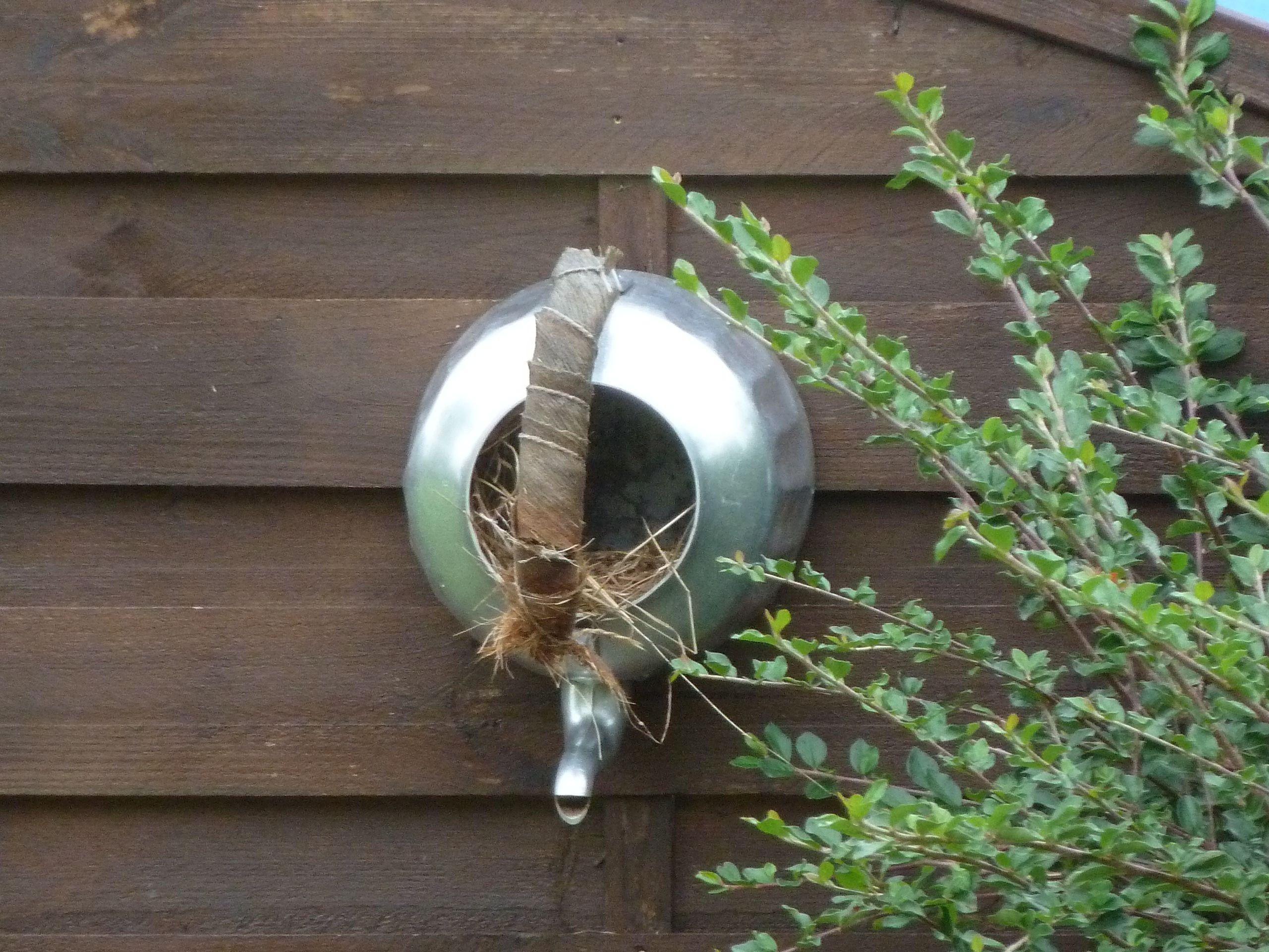 Maison d'oiseaux