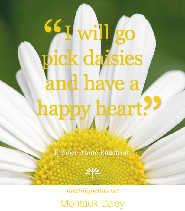 my two cents | Love the lightness and joy of this quote. So ...