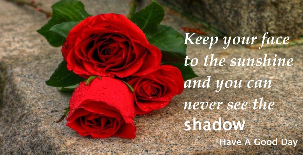 Inspirational Quotes Nature Wallpapers Most Inspirational Quote