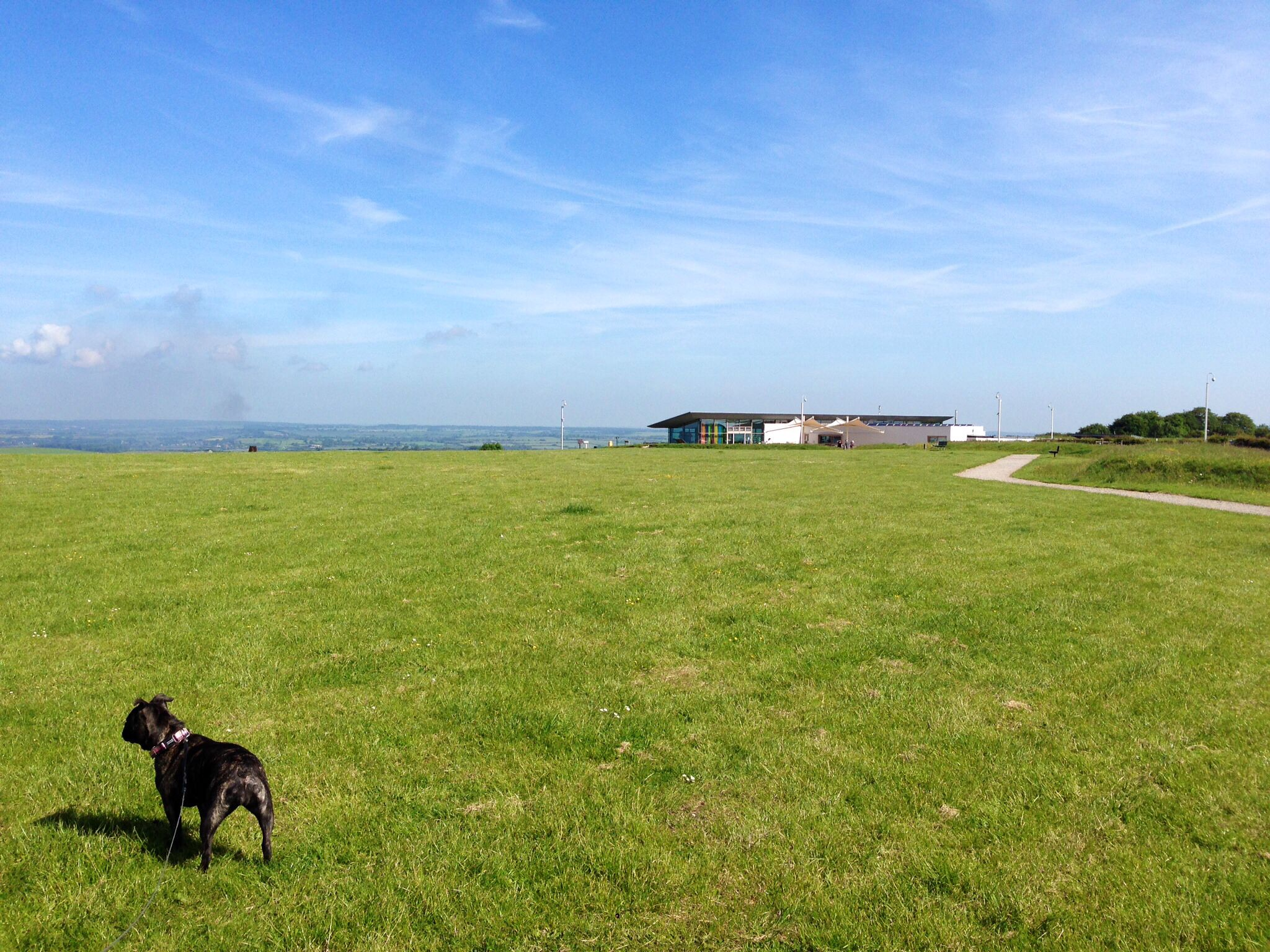 Another stunning day at Dunstable Downs.