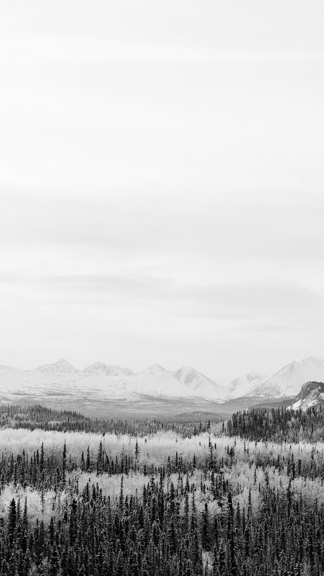 Winter Mountain Wood Nature Snow Bw Iphone 8 Wallpaper In