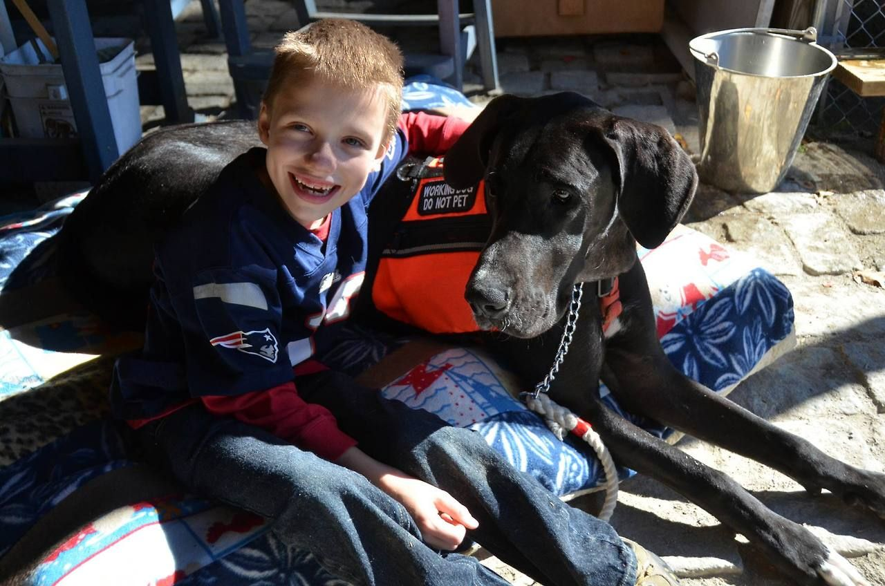 Meet Hunter And His Service Dog Wendy Wendy Is A Great Dane