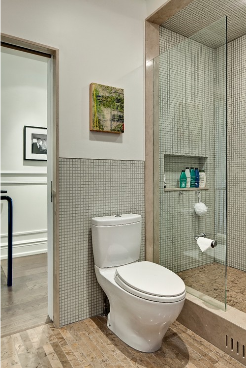 Toilet And Tp Holder Placement W Glass Shower Enclosure With