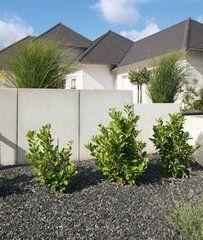 Kronimus Mauerscheibe Typ 80 Sichtschutz Garten Zaun Und Gartenzaun