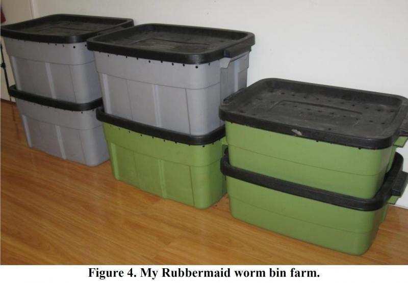 Seems inexpensive   Homesteading skills: Worm farming & composting ...