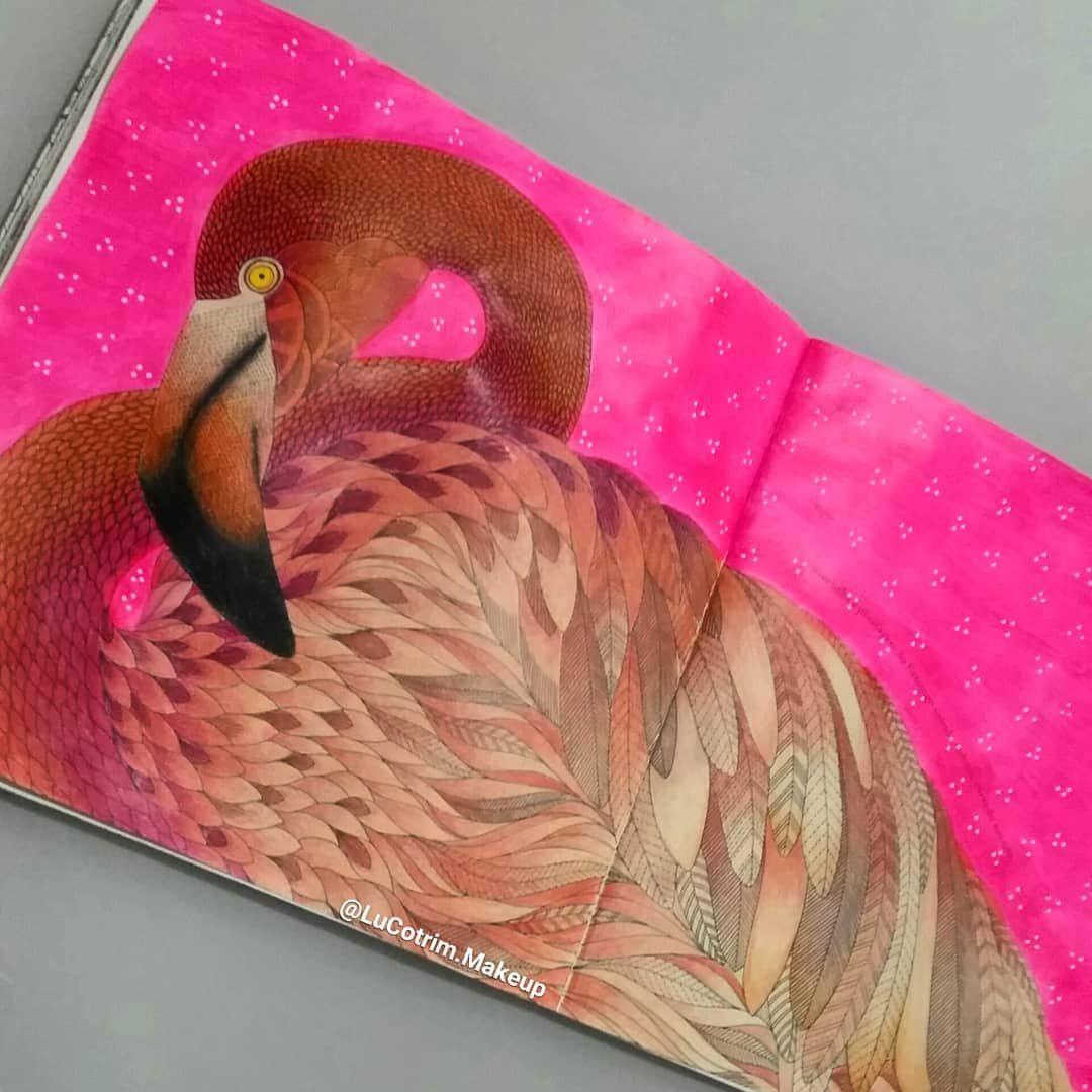 Flamingo ReinoAnimal MillieMarotta AnimalKingdom
