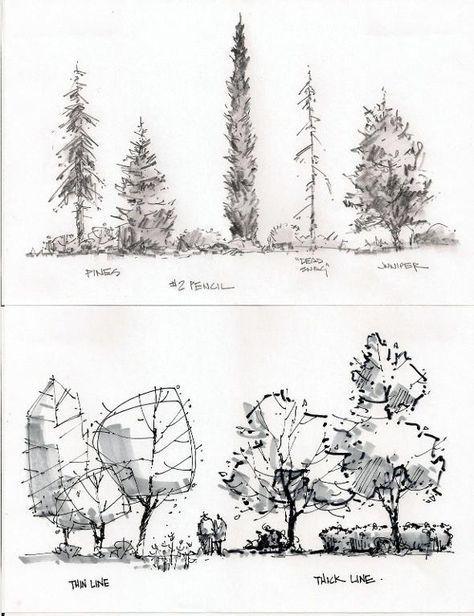 Entourage Trees Bocetos Arquitectonicos Croquis Arquitectura Dibujo De Arquitectura