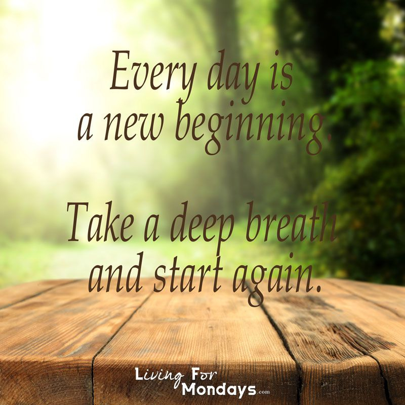 """https://www.udemy.com/simplify-your-digital-life/ """" Every day is a new beginning. Take a deep breath and start again."""" #living #for #Mondays #motivation #inspiration #quote #quotes #wood #tree #trees #brown #green #sun #new #beginning #deep #breath #start #again"""