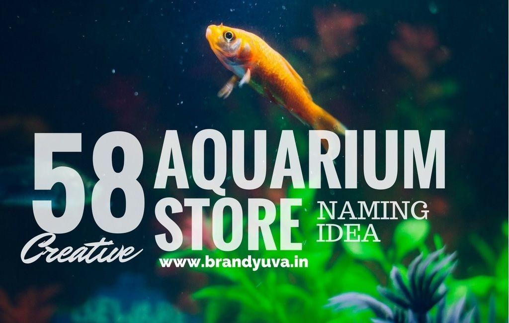 58 Best Aquarium Shop Names Idea Brandyuva In Shop Name Ideas Aquarium Shop Store Names Ideas