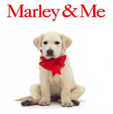 marley movie - Google Search | movies | Pinterest | Movie ...  marley movie - ...