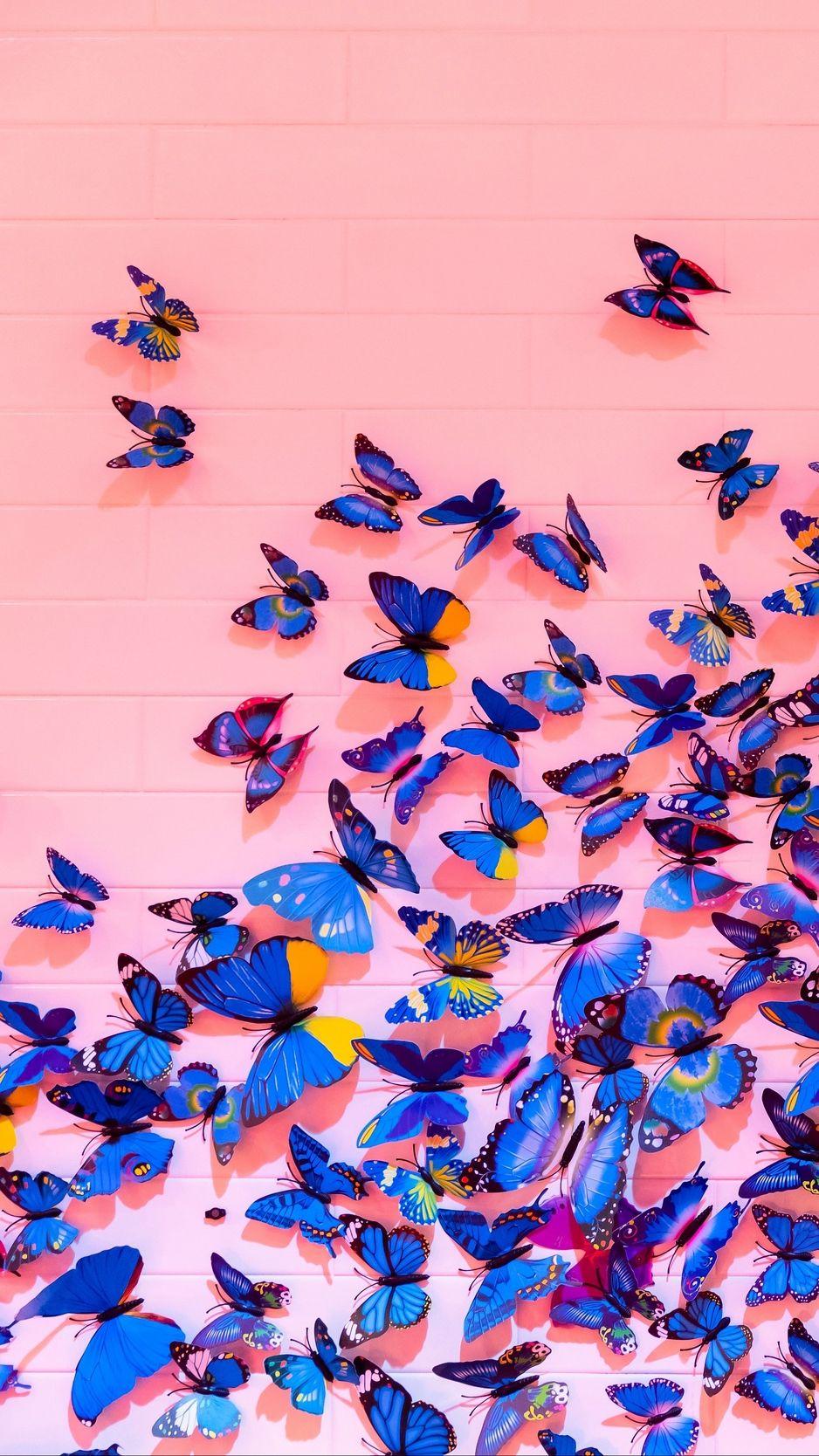Butterflies, wall, decoration, design wallpaper | Papel de ...