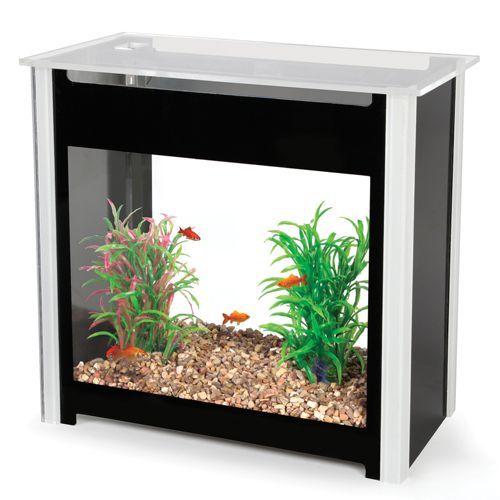 The Minimal Maintenance Aquarium.