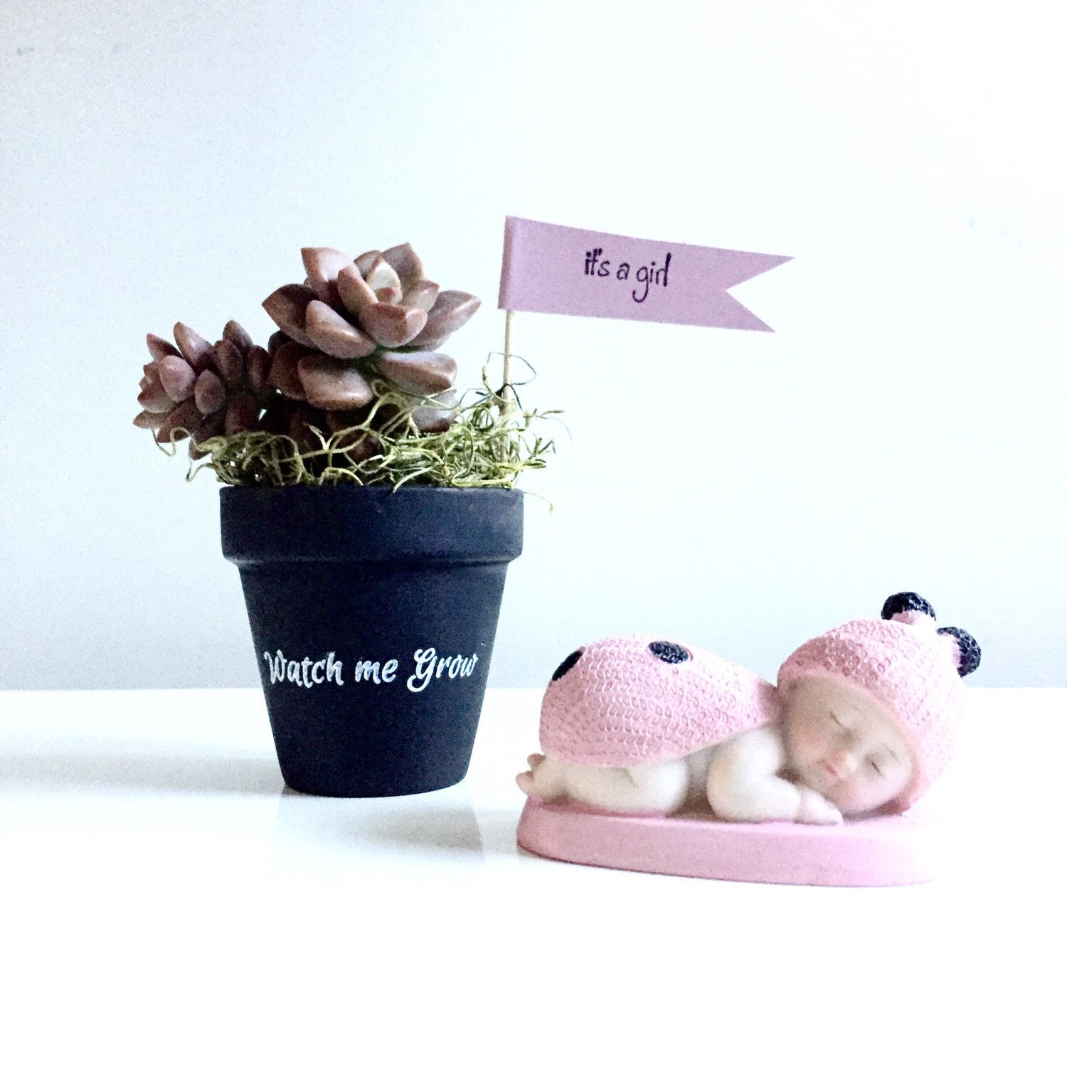 Set of 25 chalkboard clay pots with watch me grow DIY Succulent pots ...