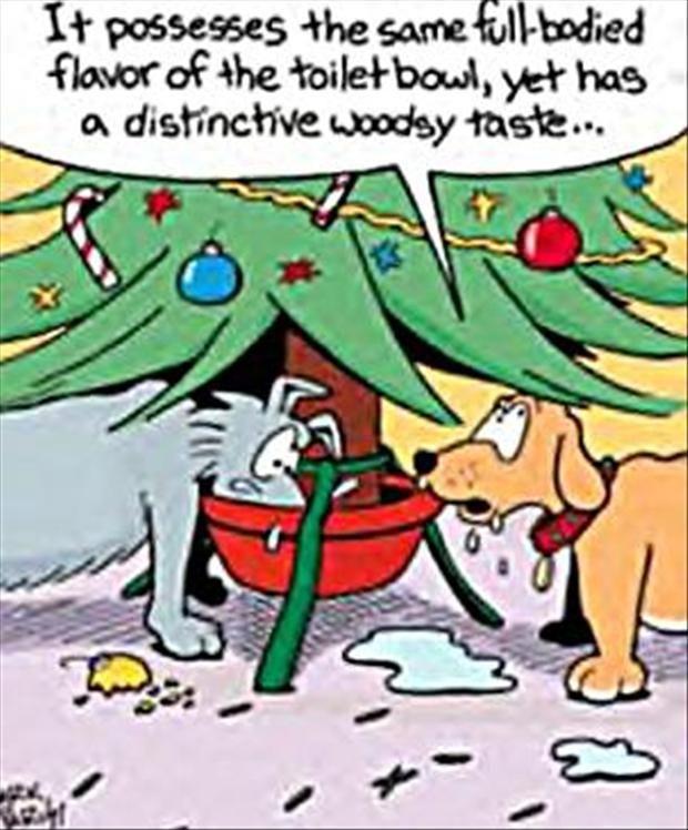 Funny Christmas Dog Cartoon With Images Funny Christmas